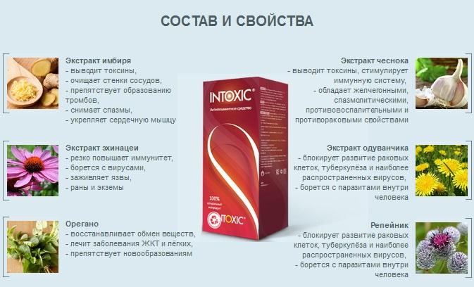 Состав препарата Интоксик Плюс