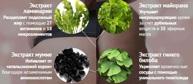 Состав из 4-х растительных компонентов