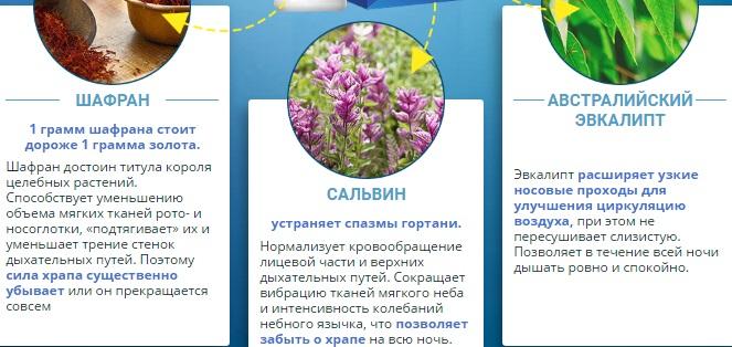 Состав спрея Минуснор