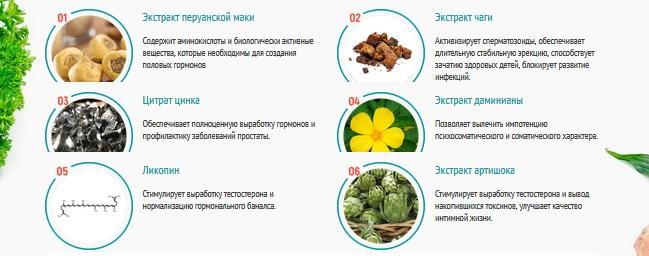 Состав Уретроактив
