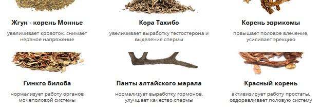 Состав капсул Potenz Aktiv