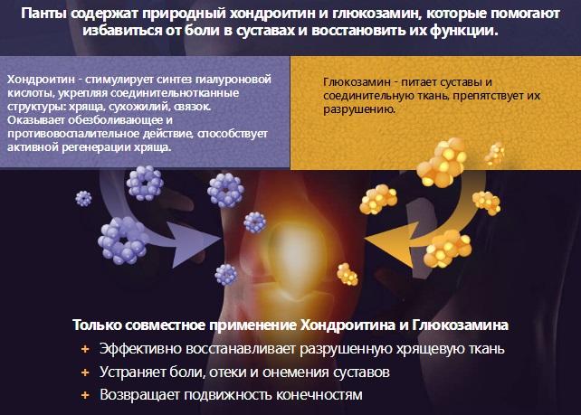 Состав крем-мази Артропант для суставов