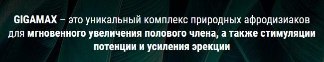 Состав геля ГигаМакс
