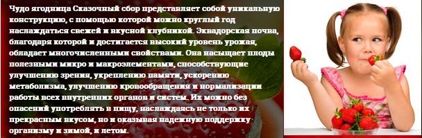 Сайт производителя ягодницы