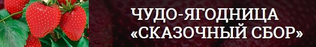 Официальный сайт чудо ягодницы Сказочный сбор