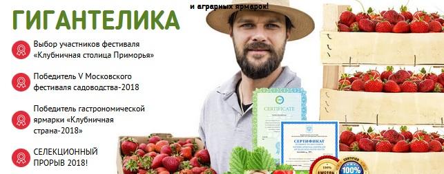 Как выращивать ягоды в домашних условиях?