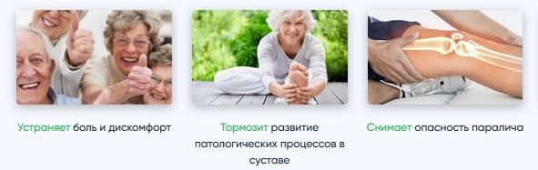 Состав геля ГиалуОртекс