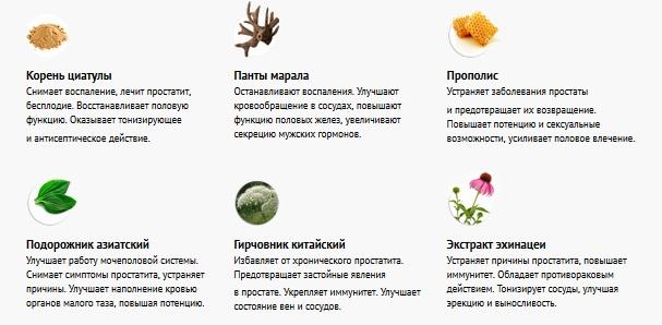 Состав препарата Урофорт Дуо для мужчин
